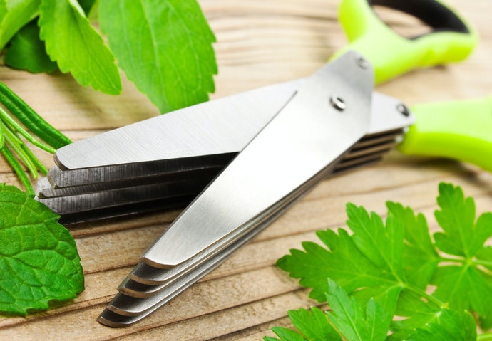 Top 10 Best Kitchen Shears In 2020 (Tramontina, World And More)