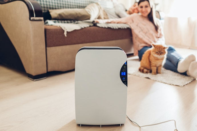 Top 10 Best Dehumidifiers To Buy In 2020 (Komeko, Thermomatic And More)